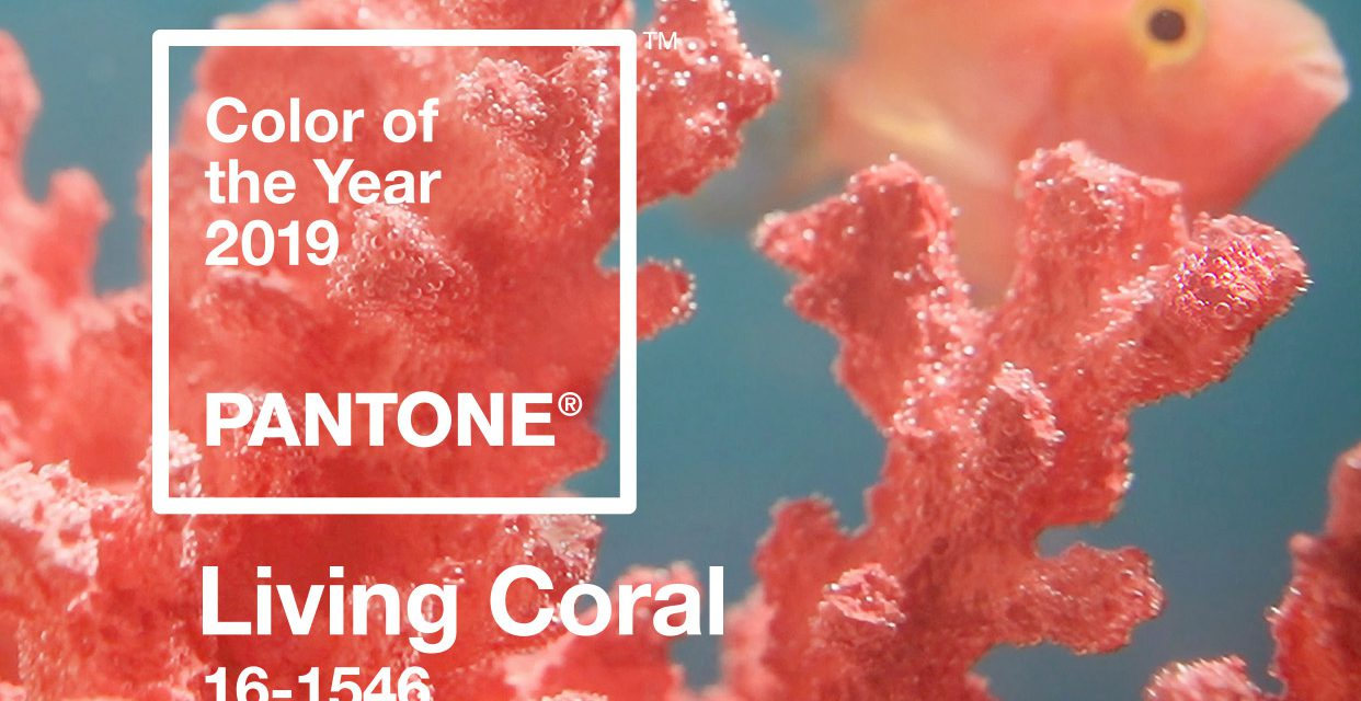 http://ebscm.com/wp-content/uploads/2019/06/pantone-color-of-the-year-2019-living-coral-banner-mobile-1242x640.jpg